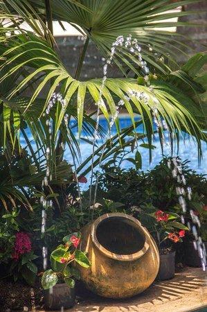 Hotel Boutique Don Pepe: Espectacular la piscina y su ambiente!