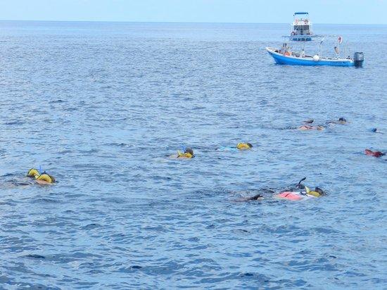 Columbia Reef: Cansativo mas gratificante!