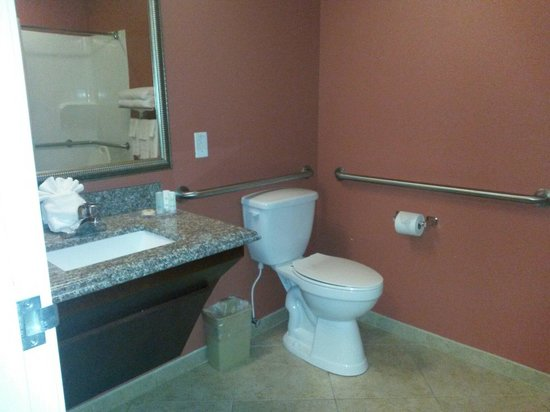 Comfort Inn & Suites Maingate South : Bathroom