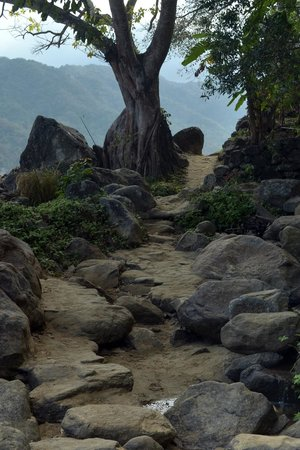 El Jardin Yelapa: path to the village, great wedding photo site