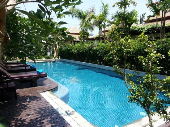 Villa Amalia : Pool