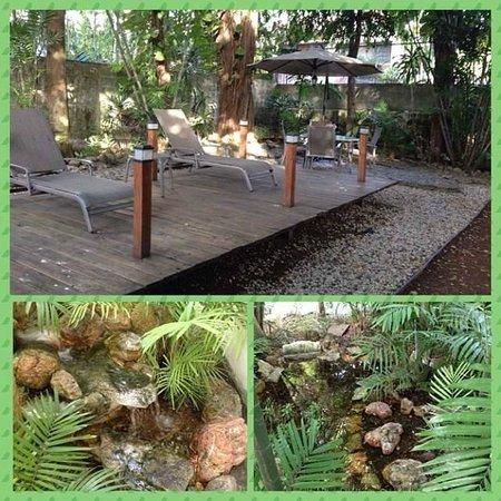 Baru Lodge: Jardim