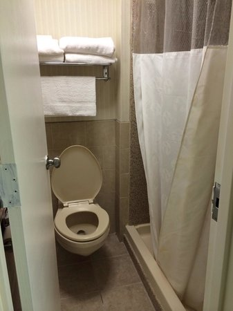 Ramada Rockville Centre: Bathroom