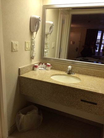 Ramada Rockville Centre: Vanity