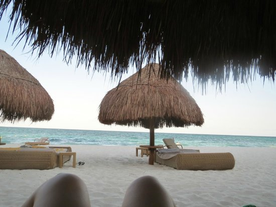 Iberostar Grand Hotel Paraiso : View from beach lounger.