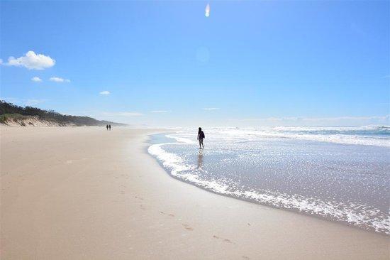 Beachcomber Peregian Beach: Beach