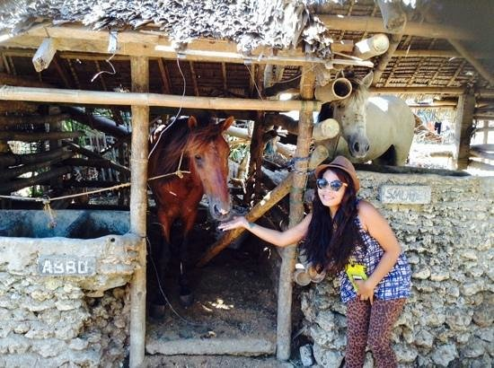 Boracay Horse Riding Stables : at stables