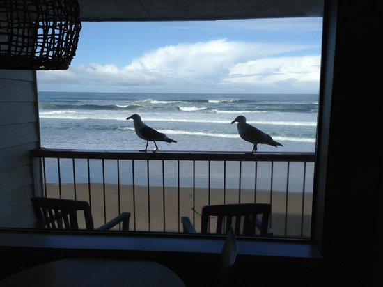 Surftides Lincoln City: Last shot of stay of our view