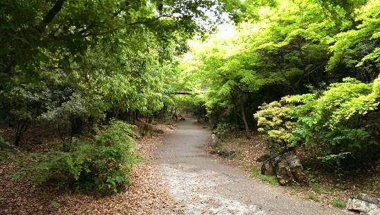 สวนอุเมะโคจิ