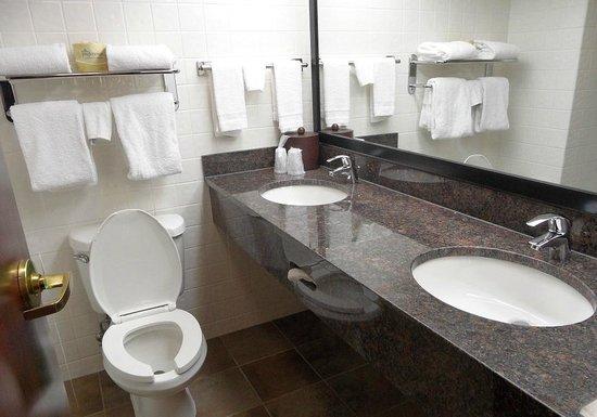 Drury Inn & Suites Champaign: bathroom