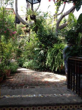 Casa de Las Flores: the inner courtyard