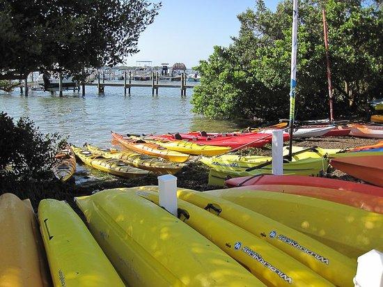 Captiva Kayak Company & Wildside Adventures: McCarthy Marina