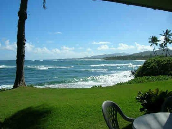 Kapaa Sands: The view from my studio #14