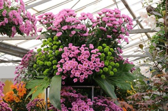 Floralia - Spring Flower Show: 温室内アート