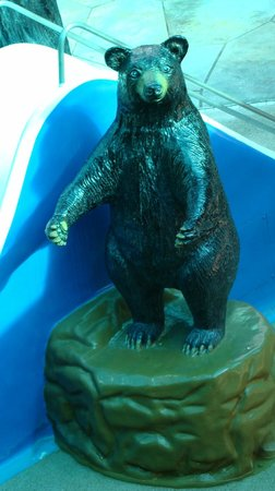 Wild Bear Falls Waterpark- TEMPORARILY CLOSED: Wild Bear Falls Indoor Waterpark  |  915 Westgate Resort Road, Gatlinburg, TN 37738