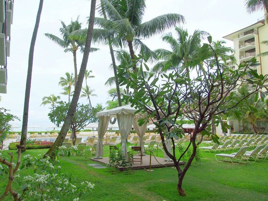 Halekulani Hotel: 部屋からの景色