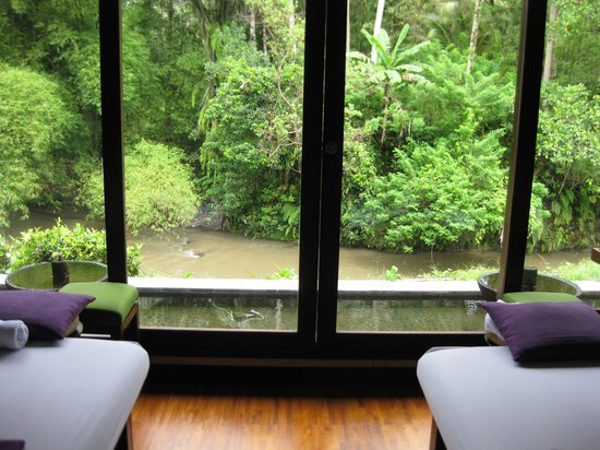 The Samaya Bali Ubud : Our private pool surrounded by butterflies and dragonflies