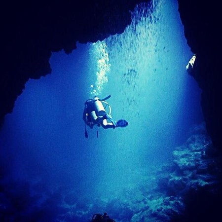 Amazing dive sites picture of black pearl divers - Roatan dive sites ...