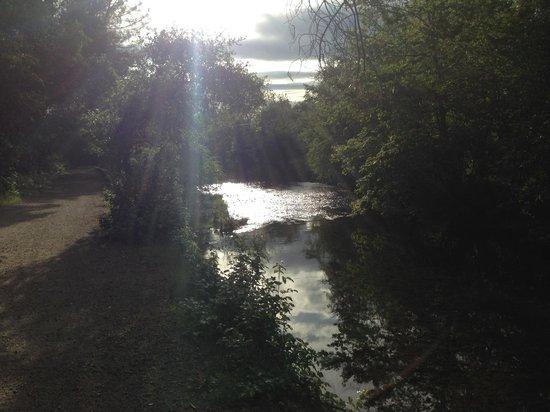Parque Bidwell: Chico Creek in Upper Bidwell Park