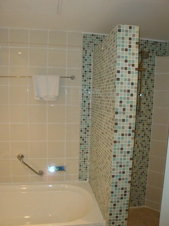 Novotel Nadi: Bathroom
