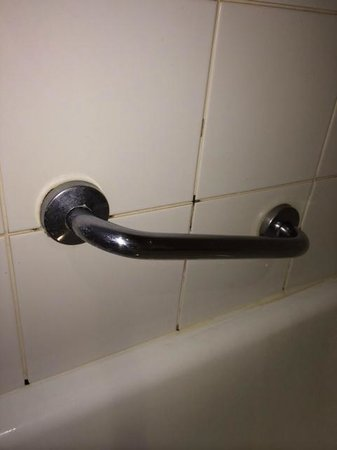 Adina Apartment Hotel South Yarra : Mouldy grout