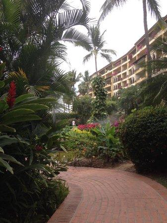 Velas Vallarta: Gardens