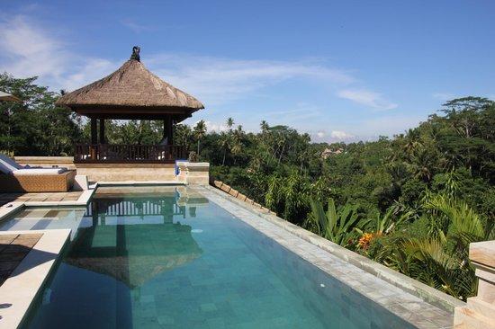 Villa Santai: pool
