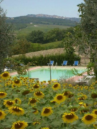 Tenuta di Argiano : the fascinating landscape