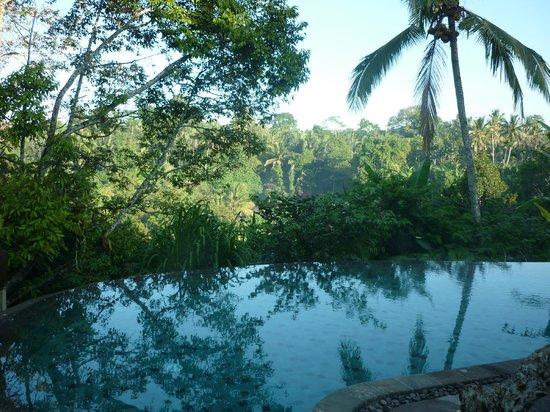 Puri Gangga Resort: piscine