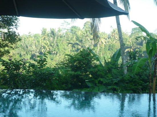 Puri Gangga Resort: ;