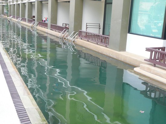 Alpina Phuket Nalina Resort & Spa: filthy pool and pool access rooms