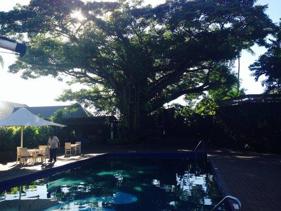Novotel Nadi : Lovely pool