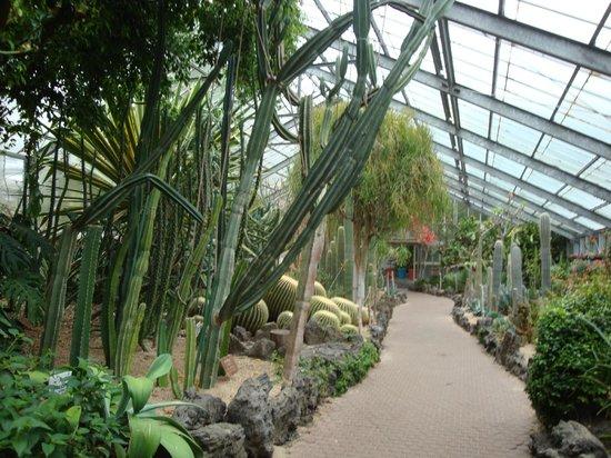 Hallim Park : Cacti Garden