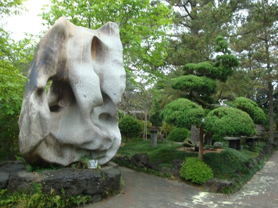 Hallim Park : Bonsai Area