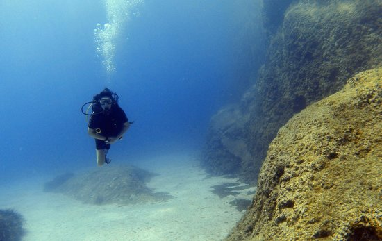 Scuba Monkey Ltd: Blue, cool waters reveal all that this wall dive has to offer