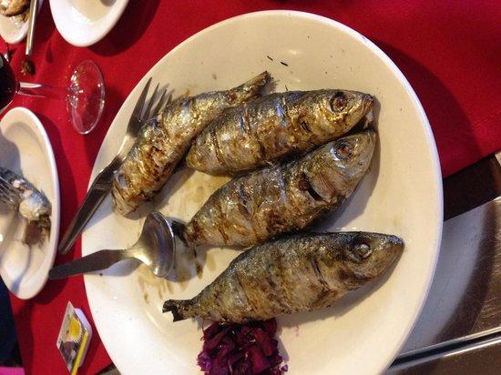Humberto's  Restaurante: Sardine starter