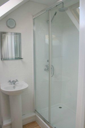 15 Bed and Breakfast: Double shower in Harbour Room