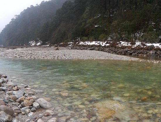 Image result for yumthang hot springs tripadvisor images