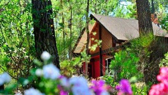 Village de Vacances Les Oyats