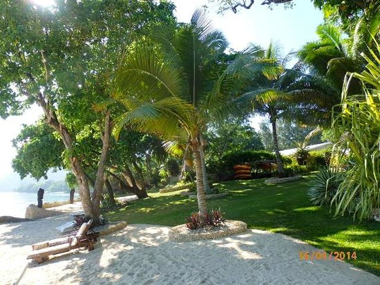 Paradise Cove Resort: Grassed area behind beach