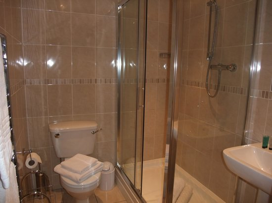 Ashbury Bed & Breakfast: Very large shower cubicle