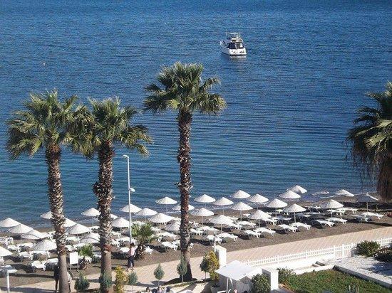 Golden Rock Beach Hotel: Daytime view