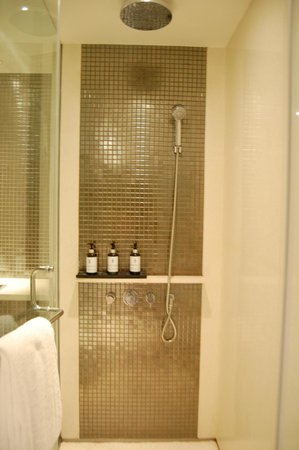 Hansar Bangkok Hotel : Shower