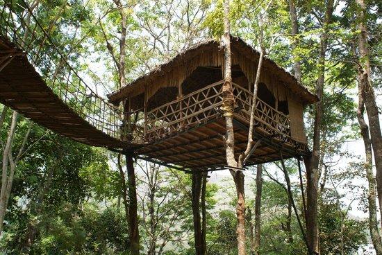 Greenwoods Resort: treetop cafe