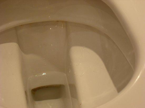Austria Trend Parkhotel Schoenbrunn Vienna : Dirty toilet in Hotel Shönbrunn
