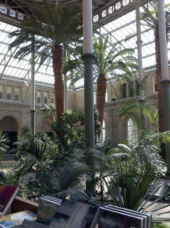 Gliptoteca Ny Carlsberg: Giardino d'inverno