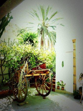 Sabir : Angolo tipico in cortile