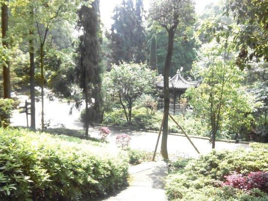 Chiang Kai-shek's Residence: Landscaped gardens