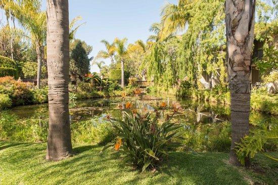 Ramada Santa Barbara: Garden pool