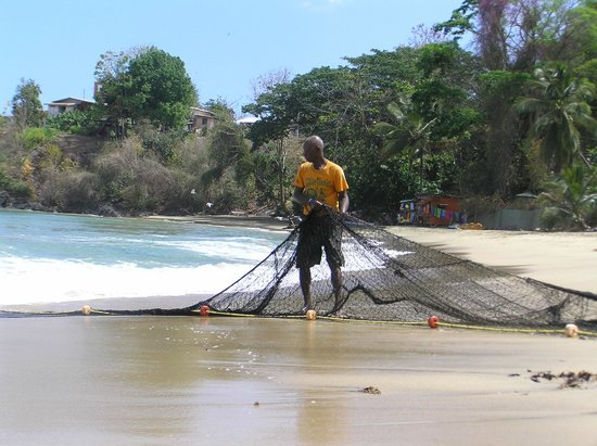 Coco Reef Tobago: Local Fisherman